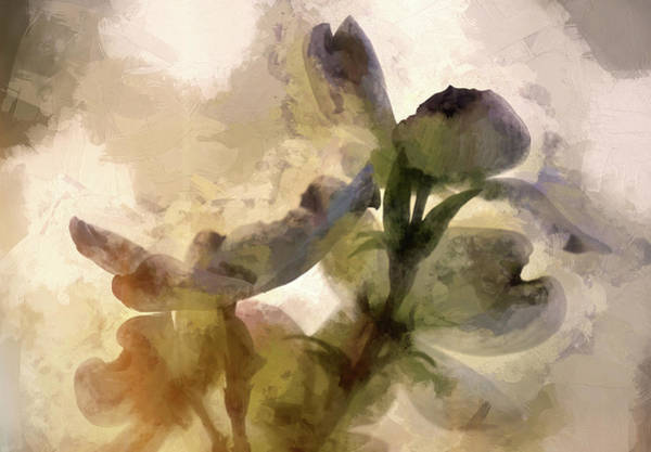 Wall Art - Digital Art - Springtime In Upstate Ny 3 by Tina Baxter