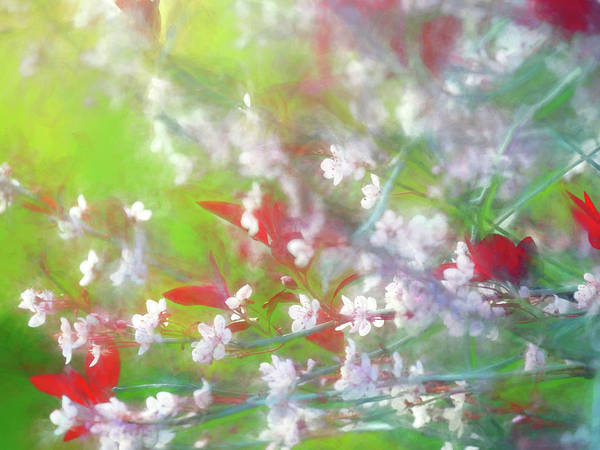 Wall Art - Digital Art - Springtime In Upstate Ny 8 by Tina Baxter