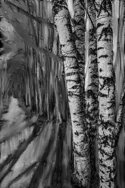Mixed Media - springtime ligh BW #i6 by Leif Sohlman