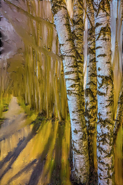 Mixed Media - Springtime Light #i6 by Leif Sohlman