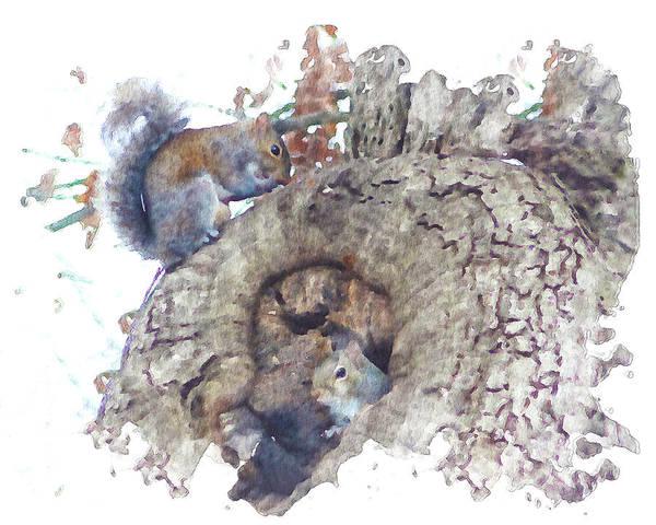 Digital Art - Squirrels Life In Big Oak by Denise Beverly