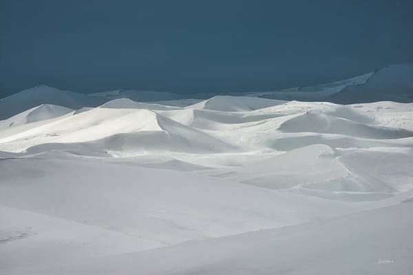 Photograph - St. Anthony Dunes Winter by Leland D Howard
