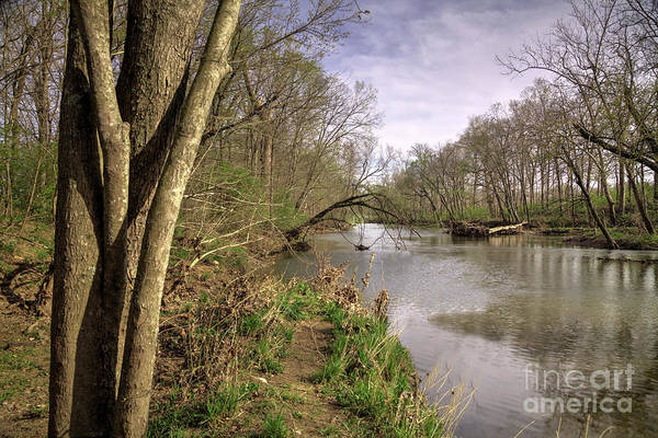 Wall Art - Photograph - St. Francois River At Engler Park  by Larry Braun