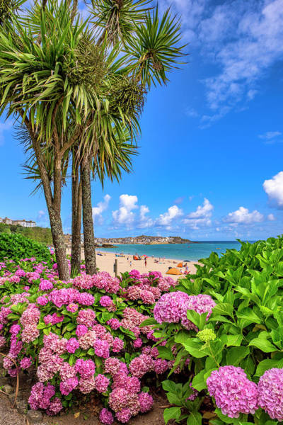 Photograph - St Ives Cornwall - Summer Time by Eddy Kinol