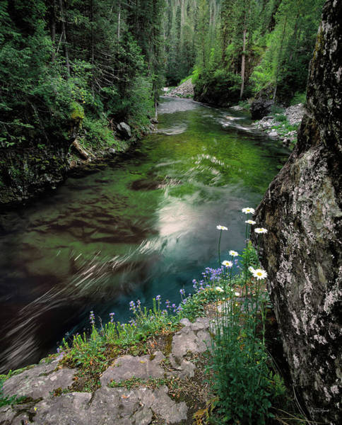 North Idaho Photograph - St Joe River by Leland D Howard