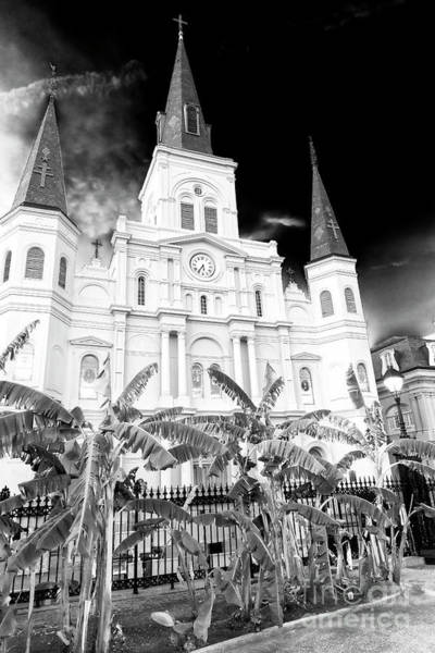 Photograph - St. Louis Cathedral At Night New Orleans by John Rizzuto