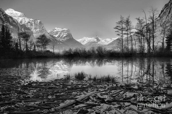 Photograph - St. Mary Driftwood Pond Reflections Black And White by Adam Jewell