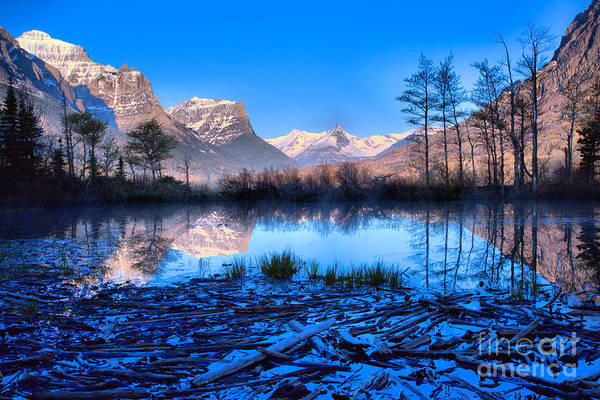 Photograph - St Mary Driftwood Pond Reflections by Adam Jewell