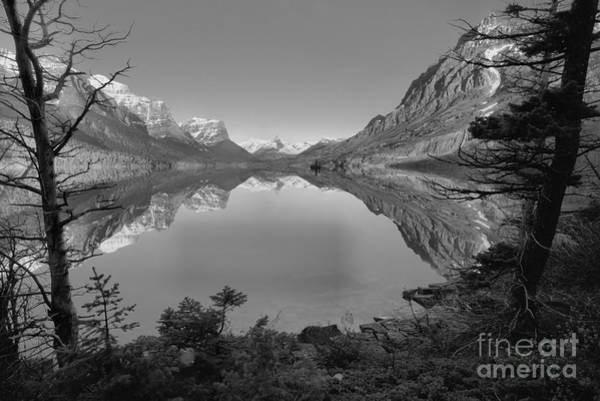 Photograph - St. Mary Sunrise Through The Trees Black And White by Adam Jewell