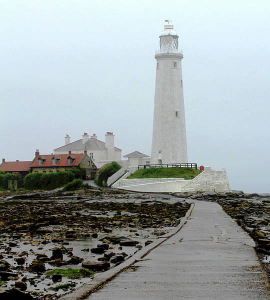 Photograph - St Mary's Lighthouse by John Dakin