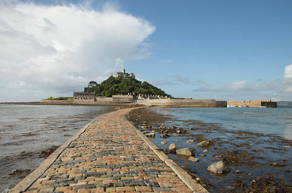 Seaweed Photograph - St Michaels Mount, Cornwall by Paulaconnelly