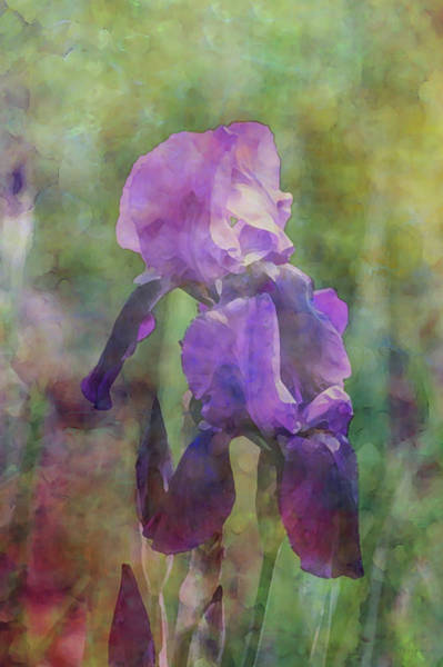 Photograph - Stacked Purple 0291 Idp_2 by Steven Ward