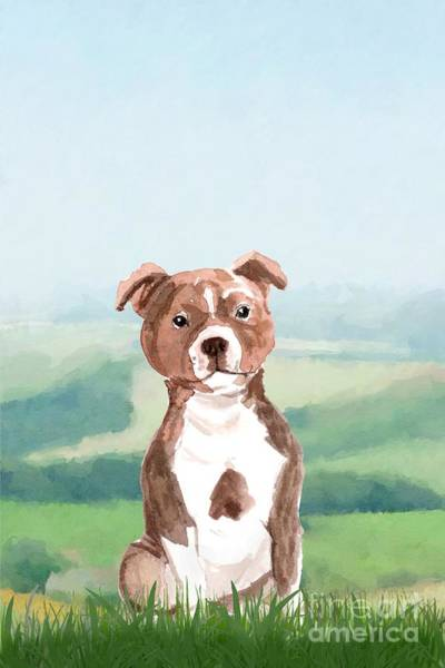 Pedigree Painting - Staffordshire Bull Terrier by John Edwards