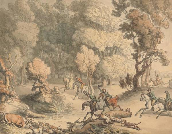 Drawing - Stag At Bay - Scene Near Taplow by Thomas Rowlandson