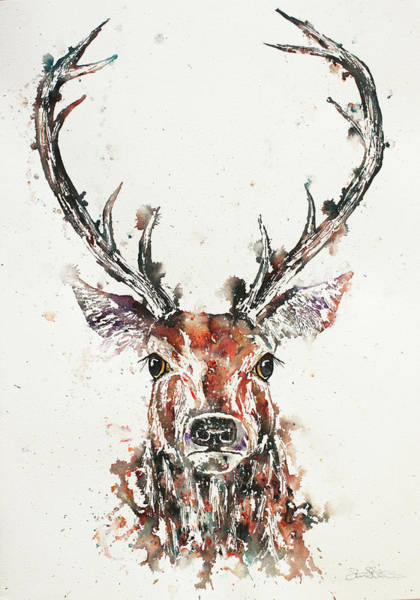 Painting - Stag Portrait by John Silver