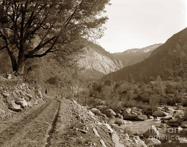Photograph - Stage Road Near El Portal, Yosemite Valley Circa 1910 by California Views Archives Mr Pat Hathaway Archives