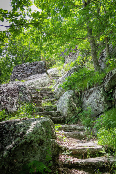Wall Art - Photograph - Stairs Of Stone by Teresa Mucha