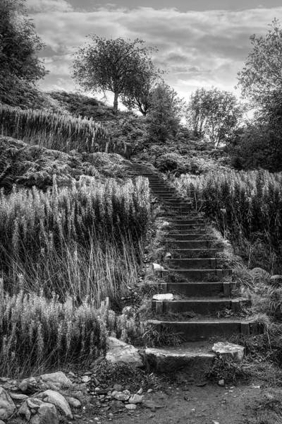 Photograph - Stairway To The Sky Black And White by Debra and Dave Vanderlaan