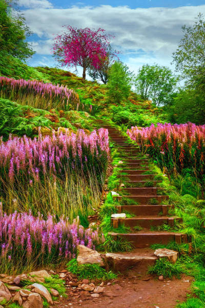 Photograph - Stairway To The Sky by Debra and Dave Vanderlaan