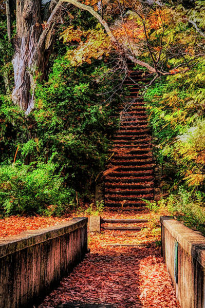 Wall Art - Photograph - Stairway To The Sky by Jeff Folger