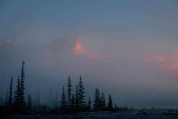Photograph - Standing Alone by Dan Jurak