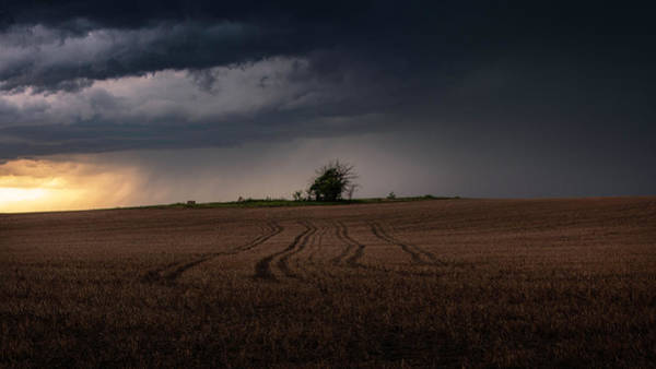 Wall Art - Photograph - Standing In A Field Somewhere Someplace by Brian Gustafson