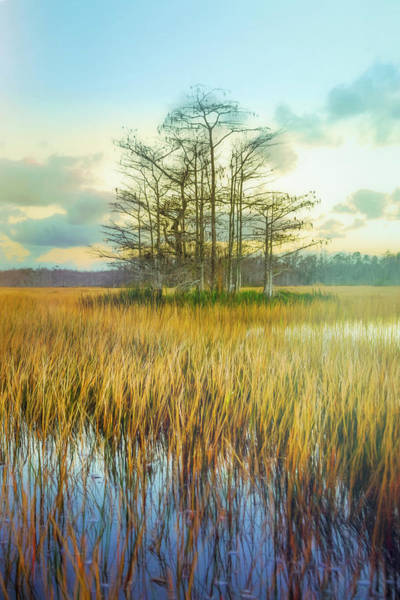Wall Art - Photograph - Standing On The Edge Of Evening  by Debra and Dave Vanderlaan