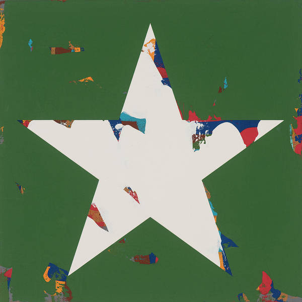 Wall Art - Painting - Star #17 by David Palmer