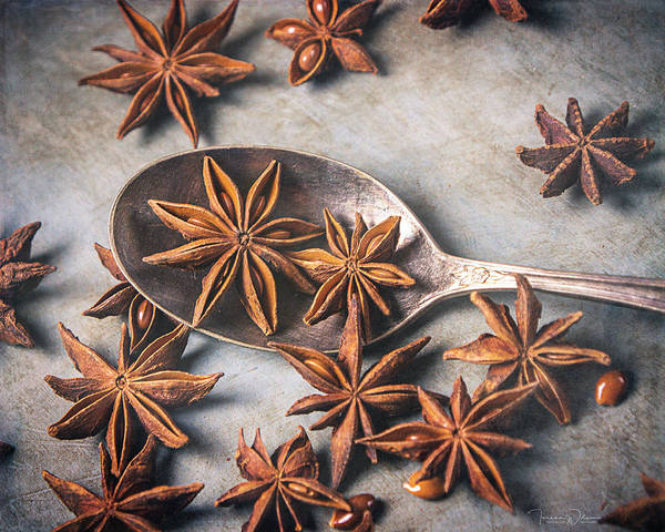 Photograph - Star Anise 4807 By Tl Wilson Photography  by Teresa Wilson