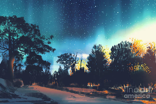 Wall Art - Digital Art - Star Field Above The Trees In by Tithi Luadthong