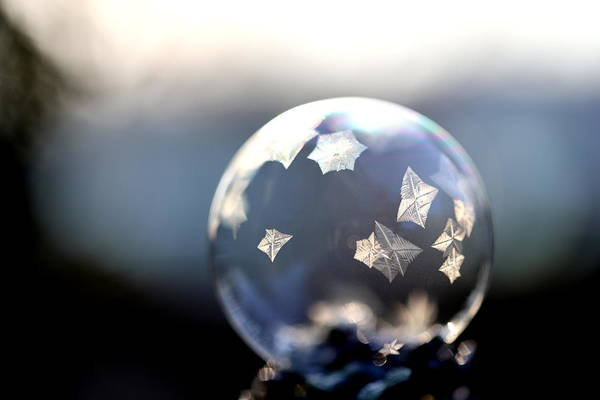 Wall Art - Photograph - Star Frosty 1 by Heike Hultsch