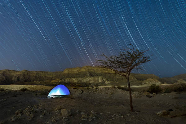 Photograph - Star Trails Over Timna Valley by Dubi Roman