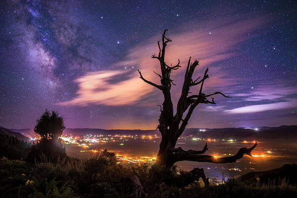 Photograph - Star Valley Milky Way by Roy Nelson