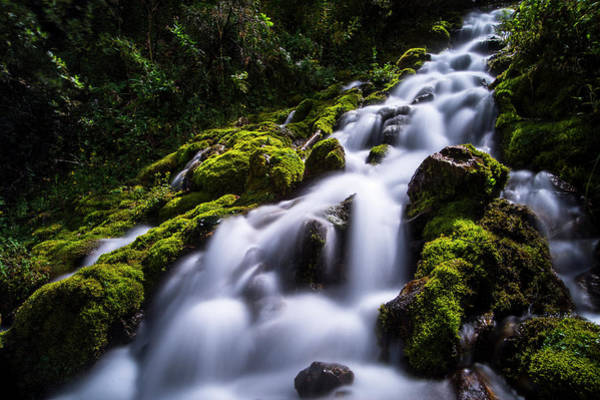 Photograph - Star Valley Waters by Roy Nelson