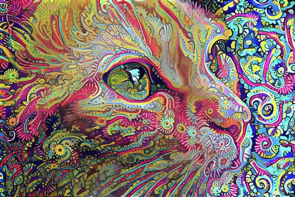 Digital Art - Stargazer by Peggy Collins
