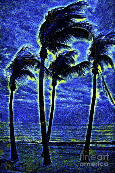 Wall Art - Photograph - Starry Night Dancing Palm Trees - Key West Florida by John Stephens