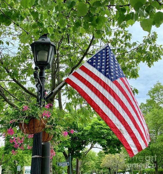 Photograph - Stars And Stripes 2 by CAC Graphics