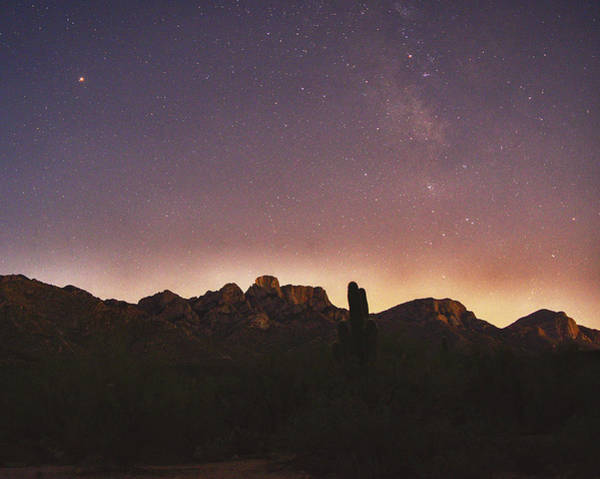 Photograph - Stars From Catalina State Park by Chance Kafka
