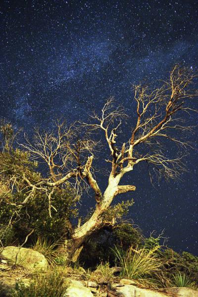 Stars Light Up Arizona Sky Art Print