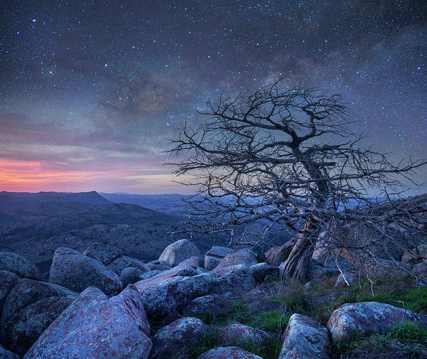 Wall Art - Photograph - Stars Over Pine, Mount Scott by Tim Fitzharris