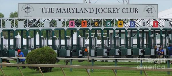 Wall Art - Photograph - Starting Gate - Pimlico by Anthony Schafer