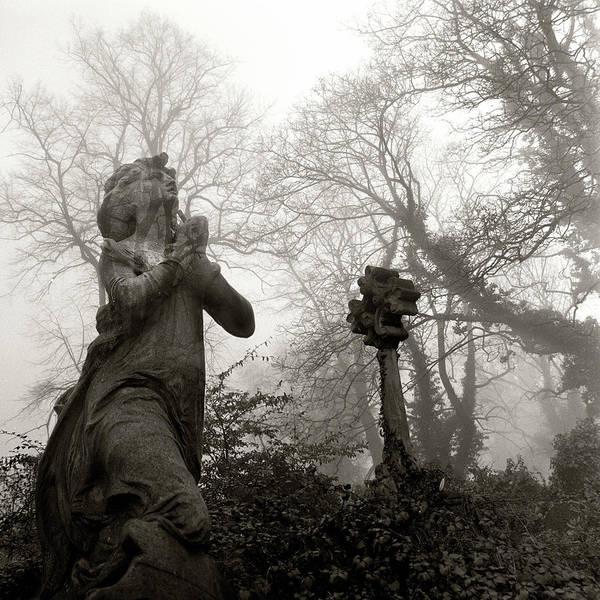 Statue Photograph - Statue by Robert Dalton