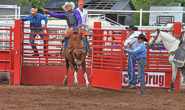 Prca Wall Art - Photograph - Stay In The Saddle Cowboy by Toni Hopper