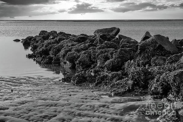 Photograph - Stay Of The Rocks - Breach Inlet by Dale Powell