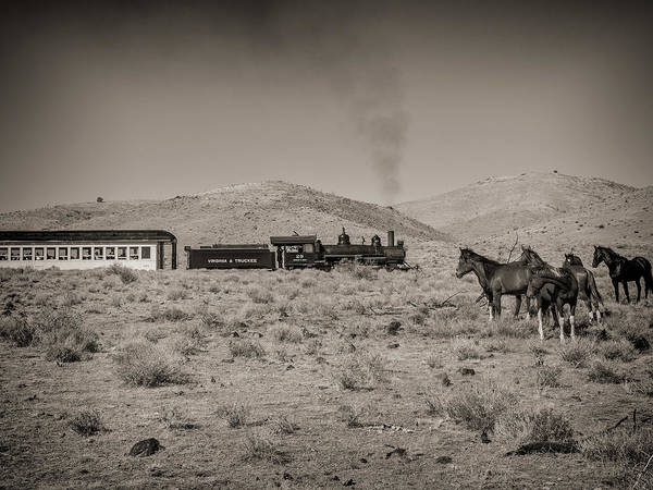 Wall Art - Photograph - Steam Train And Wild Horses by Martin Gollery