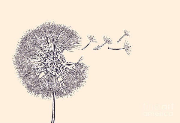 Seed Head Wall Art - Digital Art - Steampunk Dandelion by Ryger