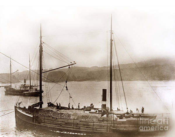Photograph - Steamship Whiteboro by California Views Archives Mr Pat Hathaway Archives