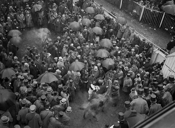 Epsom Derby Photograph - Steamy Winners by Brooke