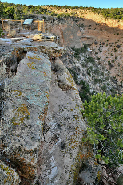 Photograph - Steep Canyon Beneath Overlook Along Rim Rock Drive by Ray Mathis