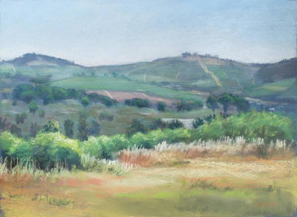 Painting - Stellenbosch Hills by Christopher Reid